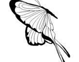 Dibujo de Mariposa con grandes alas