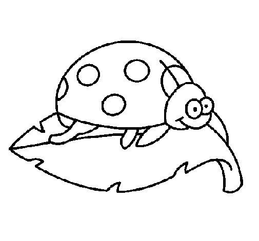 Dibujo de Mariquita encima de una hoja para Colorear