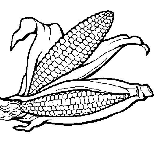 Dibujo de Mazorca de maíz para Colorear - Dibujos.net