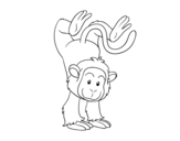 Dibujo de Mono equilibrista para colorear
