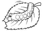 Dibujo de Oruga comiendo
