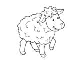 Dibujo de Oveja común