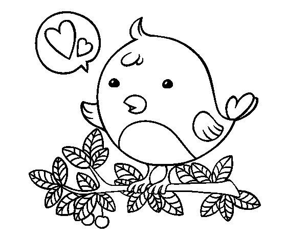 Dibujo de Pájaro de Twitter para Colorear