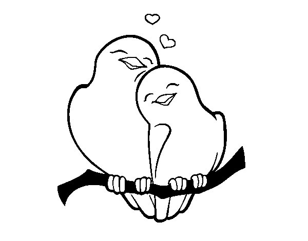 Dibujo de Palomitas enamorados para Colorear - Dibujos.net
