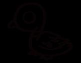 Dibujo de Pato de río para colorear