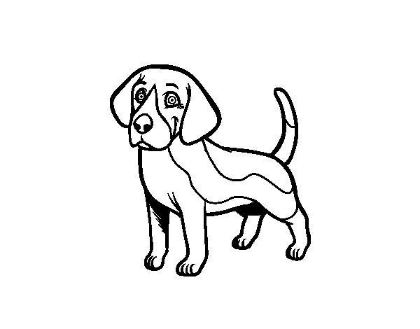 Dibujos Para Pintar De Perros. Simple Dibujo De Perro Con Manchas ...