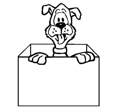 Dibujo de Perro dentro de caja para Colorear