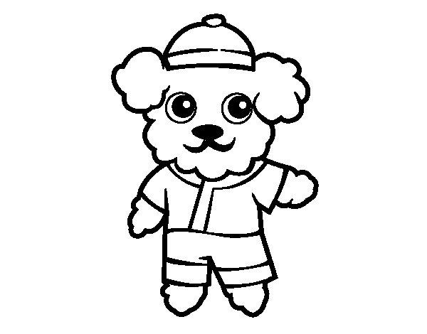 Dibujo de Perro marinero para Colorear - Dibujos.net