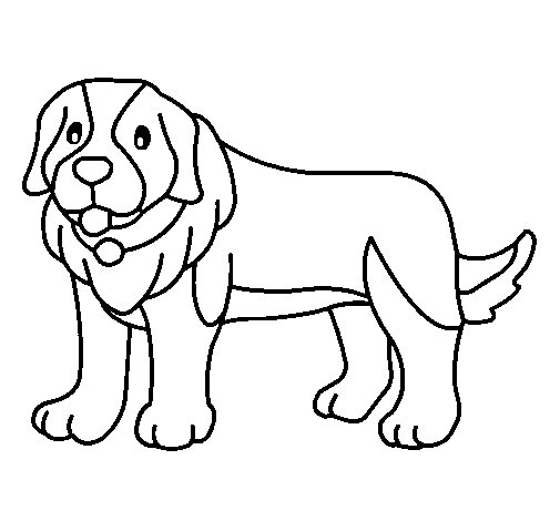 Dibujo de Perro pigmento para Colorear