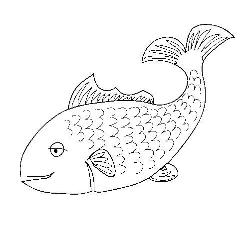 Dibujo de pez 3 para colorear for Pez cachama