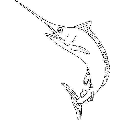 Dibujo de Pez espada para Colorear