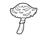 Dibujo de Seta lepiota cristata para colorear