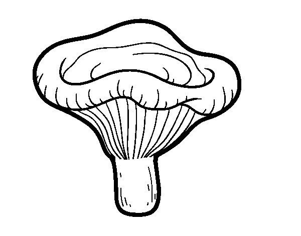 Dibujo de Seta paxillus involutus para Colorear