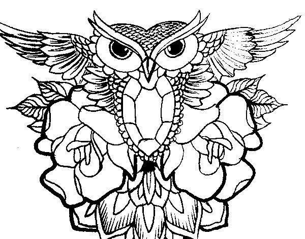 Dibujos Para Dibujar Buhos - Dibujos Para Dibujar