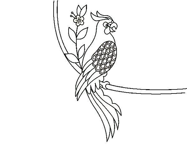 Dibujo de Tatuaje de loro para Colorear