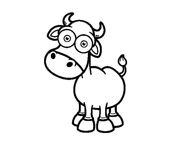 Dibujo de Toro de lidia para Colorear - Dibujos.net