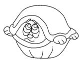 Dibujo de Tortuga asustada para colorear