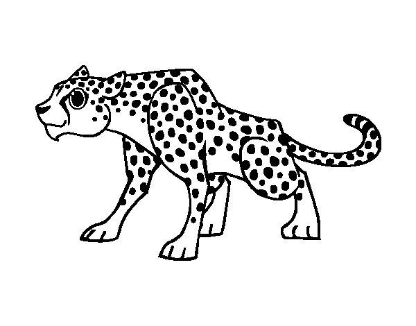 Dibujo Leopardo Para Colorear E Imprimir: Dibujos De Leopardos Bebé Para Colorear E Imprimir