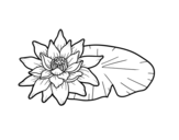 Dibujo de Una flor de loto
