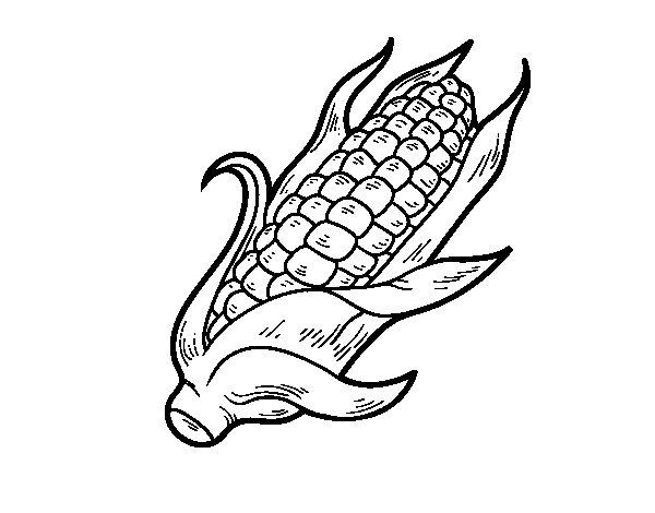 Dibujo de Una mazorca de maíz para Colorear - Dibujos.net