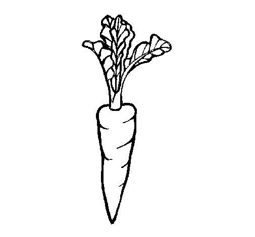 Dibujo de Zanahoria para Colorear